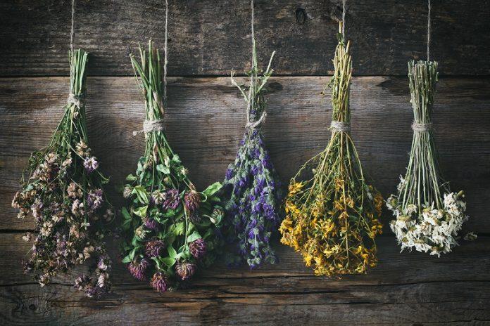 Flores secas Ofelia Home Decor